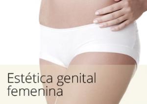 diapos_genital